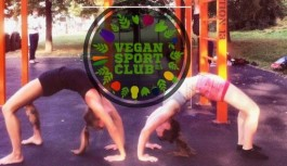 Příbram: Veřejný trénink Vegan sport clubu- kalistenika