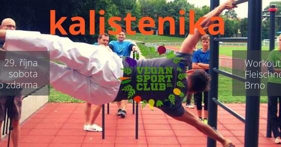 Brno: Veřejný trénink Vegan sport clubu II. – kalistenika